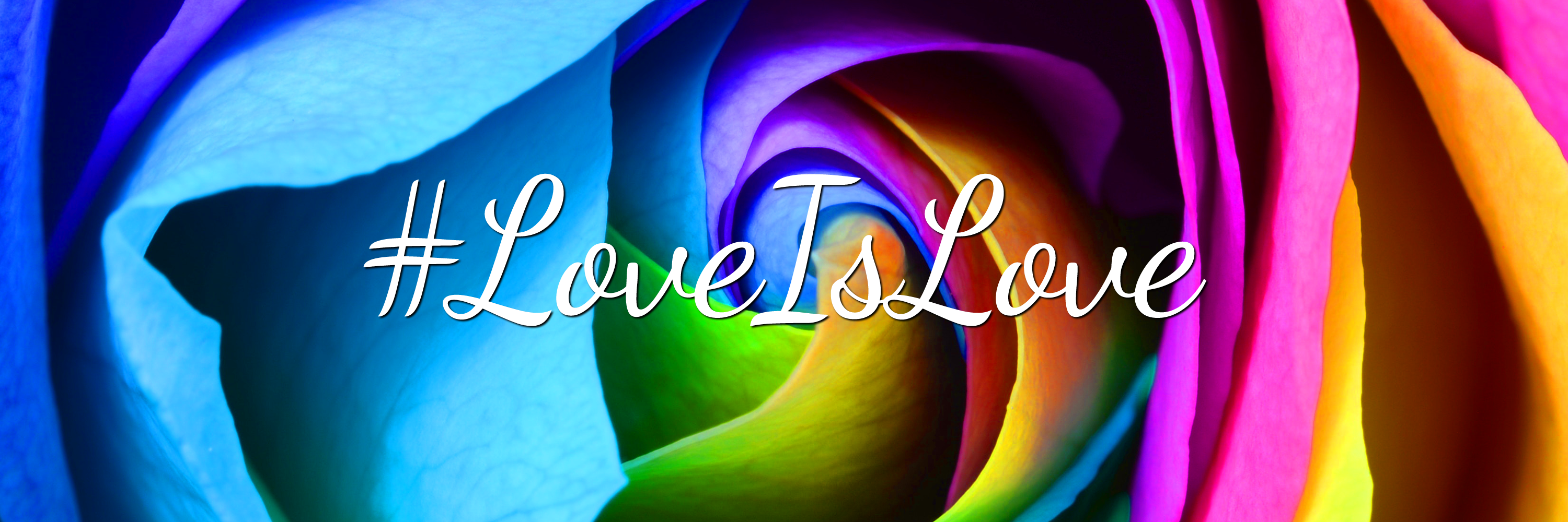 Love is Love Twitter Background